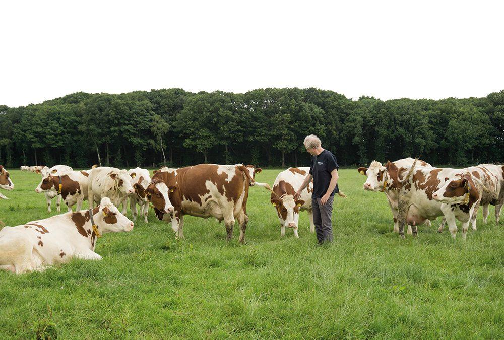 Melkveehouder Jan Keijzers in Vlierden – Klant van Lammers Machinery in Deurne
