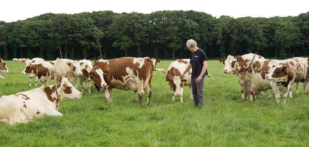 Melkveehouder Jan Keijzers in Vlierden - Klant van Lammers Machinery in Deurne (5)