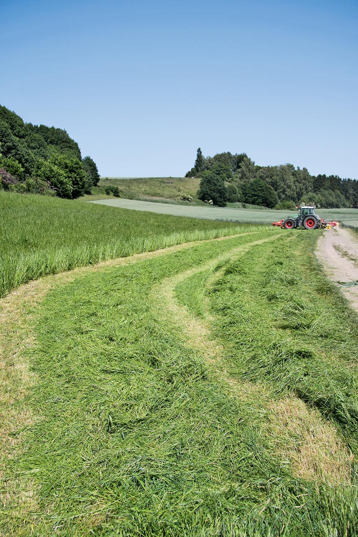 Duurtest Fella achterschijvenmaaiers - sneller drogen - Agri Trader (19)
