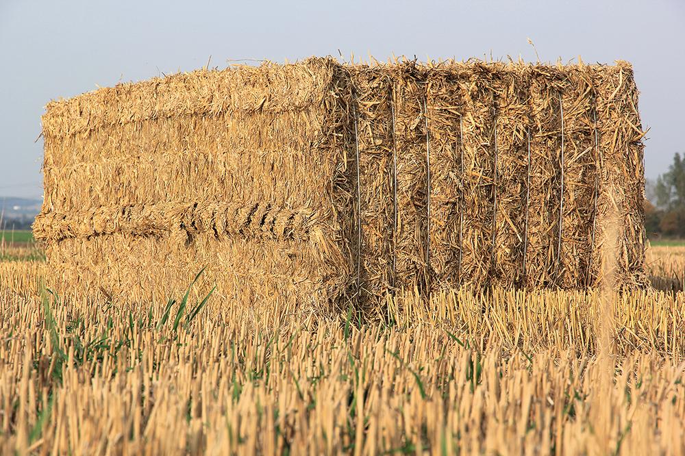 Akkertest Krone BiG Pack 1290 HDP #prestatiedrang - Agri Trader testrapport (7)