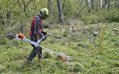 Stihl bosmaaier – de motor op de rug of aan een steel?