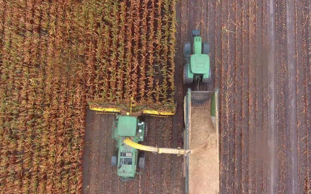 Mais hakselen en kuilen in Oost Duitsland – AgriTraderTV #59