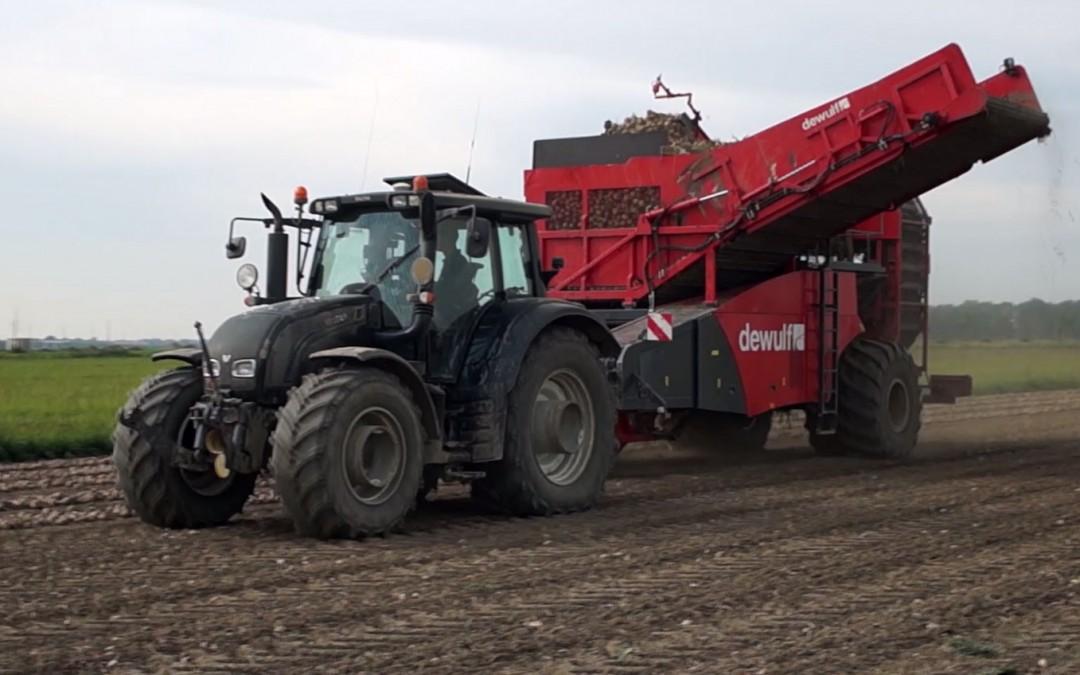 Frikandellenvulling oogsten – AgriTraderTV #7
